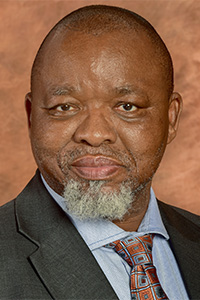 Honourable Minister Mr Gwede